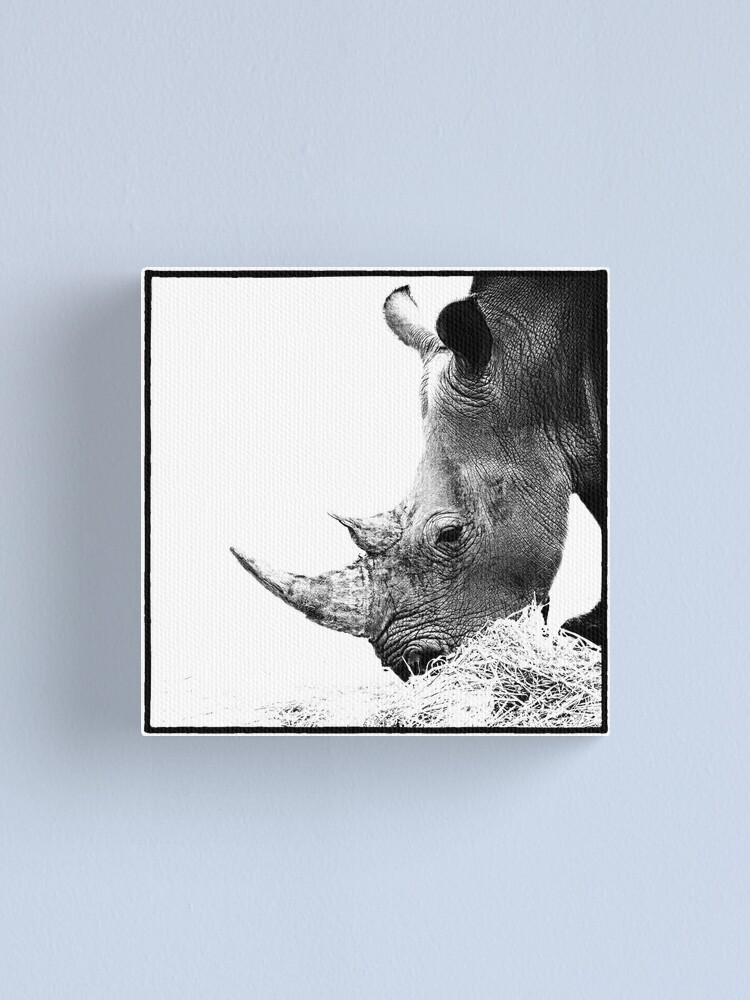 Alternate view of Rhino Canvas Print