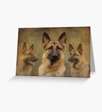Sable German Shepherd Dog Collage Greeting Card