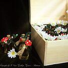 Treasure chest Pixie II Wedding favors & Handfasting by INma Gallego Gómez - Pastrana