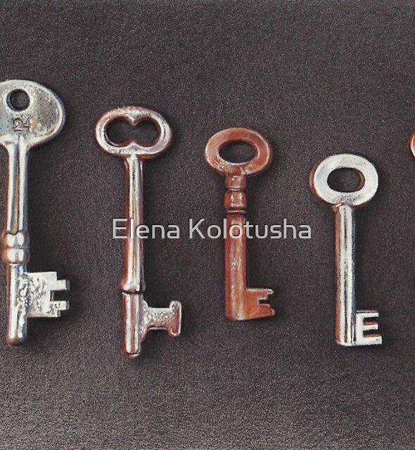 Keys by Elena Kolotusha