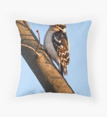 Downy Woodpecker and Budding Maple Branch Throw Pillow