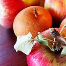 179/365 fruitful by LouJay