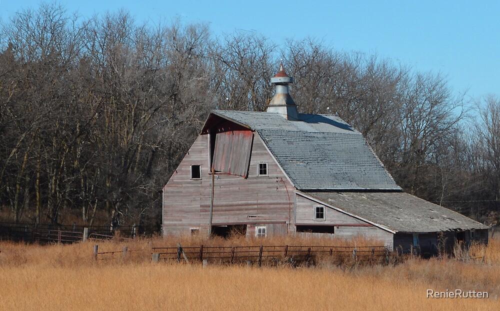 Old Red Barn by RenieRutten