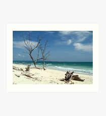 """The Mesmerising beauty of Andaman # 2"" Art Print"