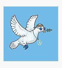 The Hippie Dove Photographic Print