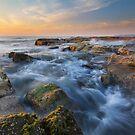 Susan Gilmore beach at dawn by benivory