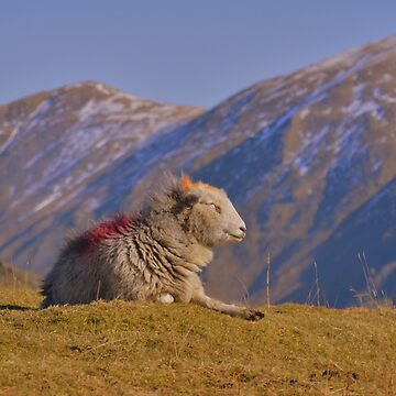 The Lake District: Enjoying Some Winter Sun by rob3003