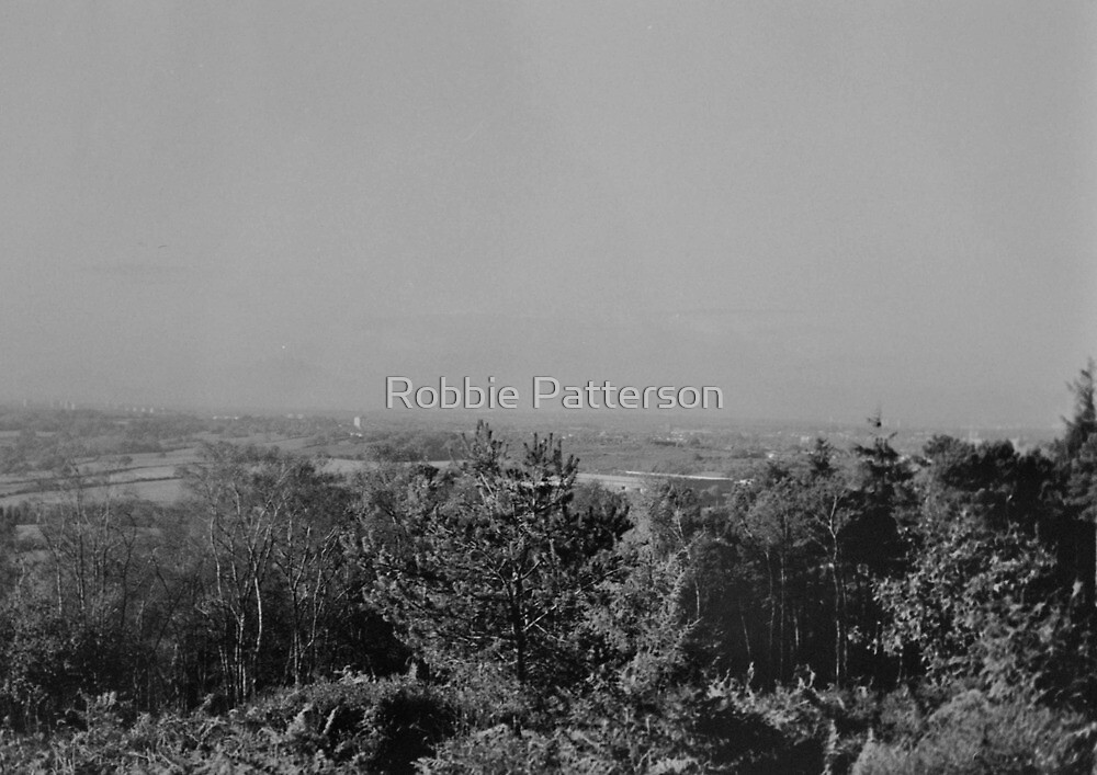 Wood View Point Over Birmingham Black And White by Robbie Patterson