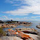 Bay of Fires grants point Tasmania by Glen Johnson