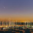 Comet PanSTARRS above Sandringham Yacht Club by Alex Cherney