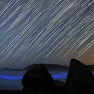 Raining Stars, Glowing Sea by Alex Cherney