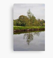 Tree Mirror Image 1  Canvas Print