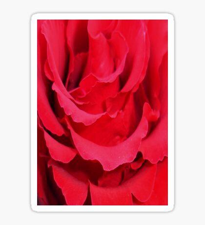 Beautiful Close Up Of Red Rose Petals Sticker