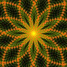 Floral Symmetry  by Georgia Wild