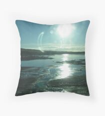 Reflection on a Glacial Road Throw Pillow