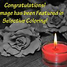 Selective Coloring Feature Banner by MissyD
