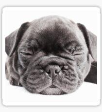 Sleepy Joe Sticker
