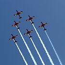 Roulettes 2 by Di Jenkins
