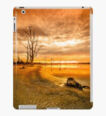 Tree stumps in dry lake - Kings Billabong iPad Case/Skin