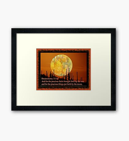 Foods of the earth... Framed Print