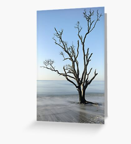 Botany Bay Blues  Greeting Card