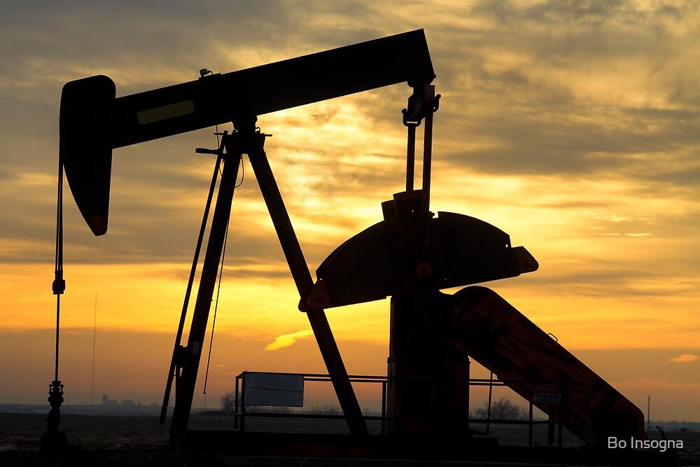 Oil Pump Sunrise by Bo Insogna