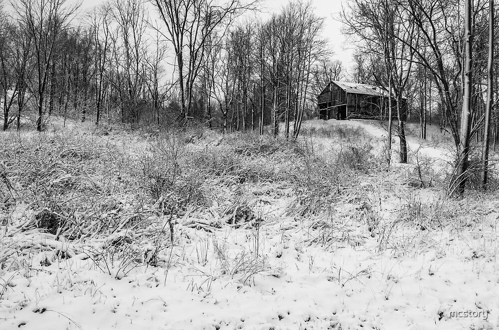Winter Barn 1 - Black and White by Mary Carol Story