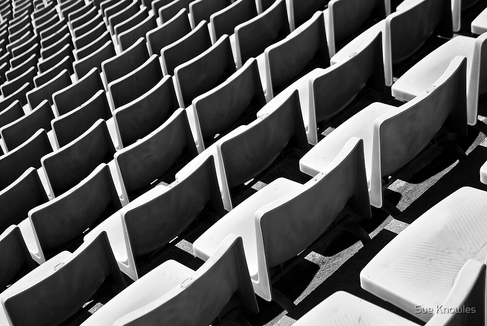 The Seating Plan by Sue Knowles