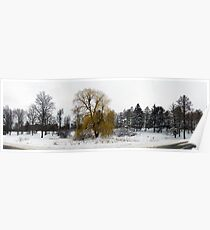 Weeping Willow on a snowy day Poster