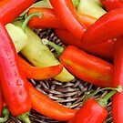 Chilli by Janie. D