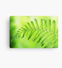 Lime Green Fern Leaf  Metal Print