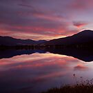 Reflections of Bogong by Mark  Lucey