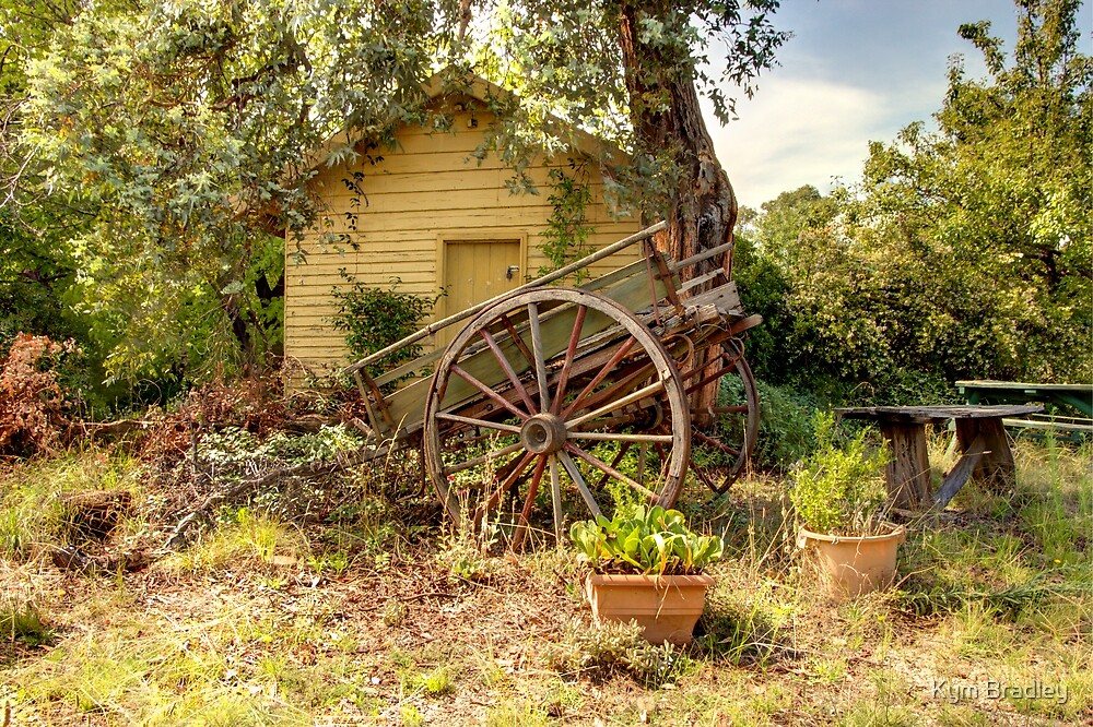 Old Cart Hills Station  by Kym Bradley