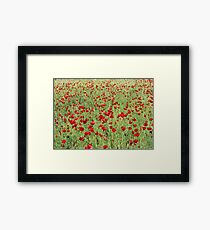 A Pasture Of Red Poppies and Remembrance Framed Print