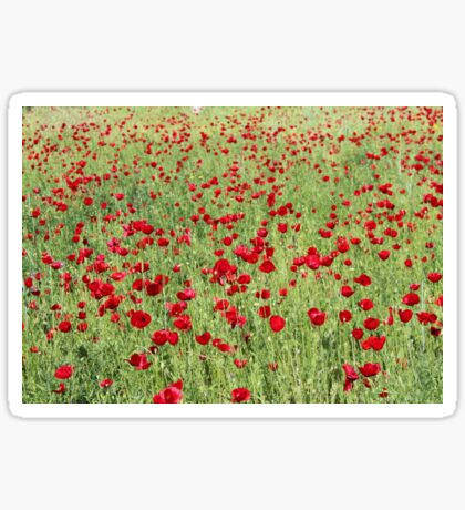 A Pasture Of Red Poppies and Remembrance Sticker