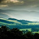 Glentress, Near Pebbles, Scottish Borders, Sept 2007 by Iain MacLean