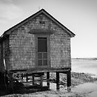 Assateague Island Shack by Rob Diffenderfer