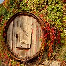 No More Wine  ~ Old Barrel Canberra ~ by Kym Bradley