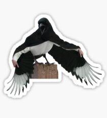 Magpie Dracula Sticker