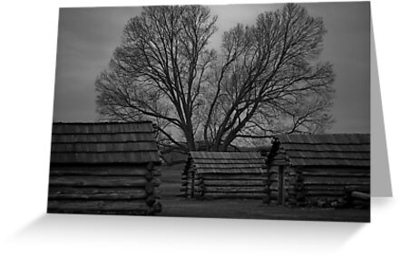 Valley Forge - Cold January Day by Ren Provo