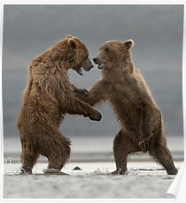 Dueling Bears Poster