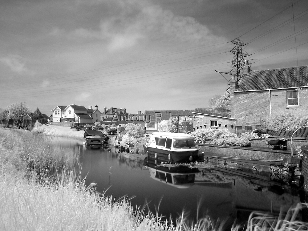 Bridgwater and Taunton Canal #3 by Antony R James