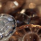 Buttons and bokeh by Fizzgig7