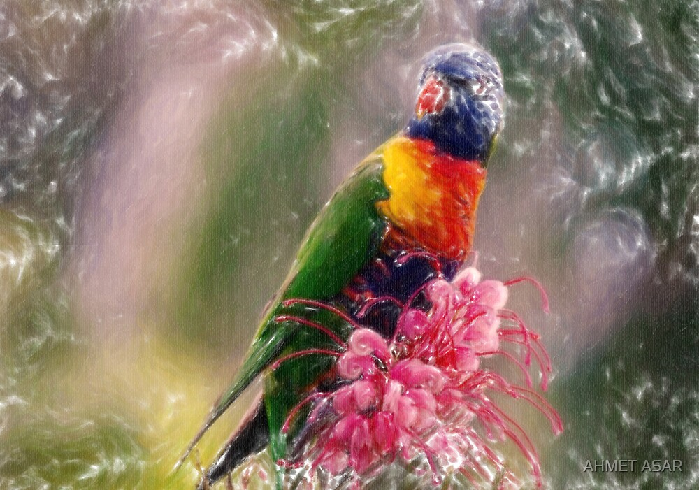 exotic bird pastel by MotionAge Media