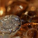 Buttons and bokeh 2 by Fizzgig7