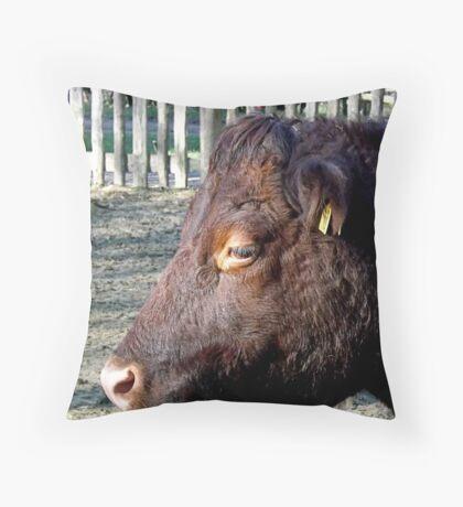 Cattle Throw Pillow