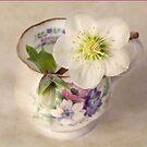 January Flowers by inkedsandra