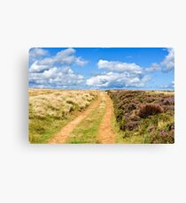A track to the sky Canvas Print