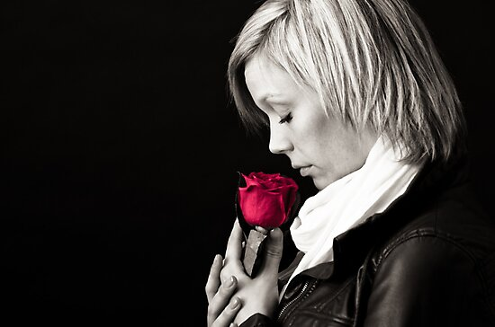 Scent of a Rose by Charles Plant
