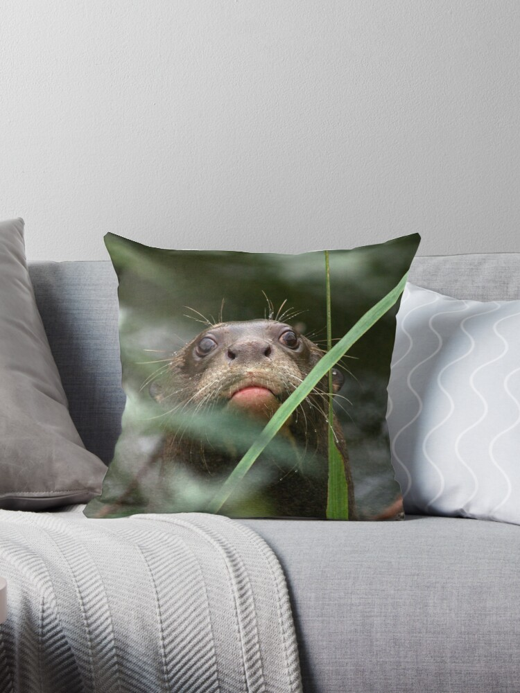 Giant Otter Throw Pillows by GreyFeatherPhot Redbubble